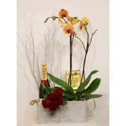 Caja con orquídea, champagne, bombones y ramo de rosas