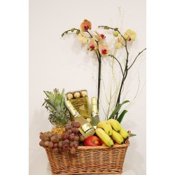 Caja con fruta, cava, orquídeas bombones